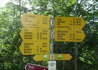 Wallfahrt 2011 nach Iddaburg und Fischingen